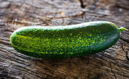 Organic cucumber Stock Photography