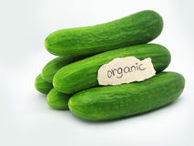 Organic Cucumbers. A stack of cucumbers with organic written on the lable Stock Image