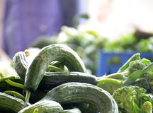 Organic cucumbers on a market Royalty Free Stock Photos
