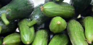 Organic cucumbers on a market Stock Image