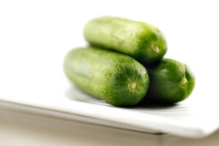 Organic cucumbers on a white ceramic plate Stock Images
