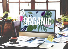Organic Cultivation Fresh Growth Natural Health Concept Royalty Free Stock Images