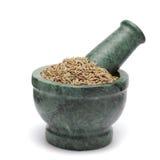 Organic Cumin seed (Cuminum cyminum) on marble pestle. Stock Photo