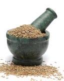 Organic Cumin seed (Cuminum cyminum) on marble pestle. Royalty Free Stock Image