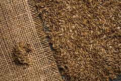 Organic Cumin Seeds on Sack Cloth and Blue Table Stock Photography