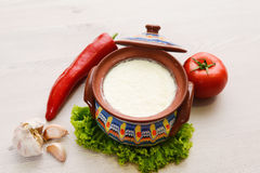 Organic dairy products Stock Photography