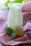 Organic dairy products (yogurt, sour cream) Royalty Free Stock Photography