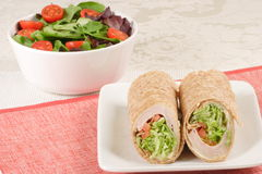 Organic delicious turkey wrap. Perfect party plate ,catering plate this is a perfect choice for your meetings Royalty Free Stock Images