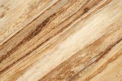 Organic diagonal texture Royalty Free Stock Image