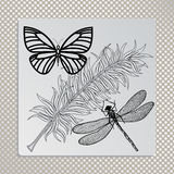 Organic Dragonfly butterfly and feather Royalty Free Stock Image