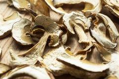 Organic dried mushrooms, close-up royalty free stock photo