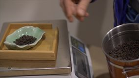 Organic dried tea brewing on electronic scales. Organic dried tea on electronic scales. Cropped view of man putting portion of oolong tea brewing into little stock video