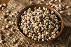 Organic Dry Black Eyed Peas Stock Photo