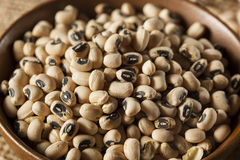 Organic Dry Black Eyed Peas Royalty Free Stock Image