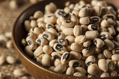Organic Dry Black Eyed Peas Stock Photos