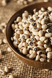 Organic Dry Black Eyed Peas Royalty Free Stock Photo