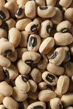 Organic Dry Black Eyed Peas Royalty Free Stock Photography