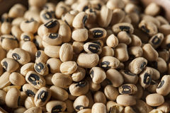 Organic Dry Black Eyed Peas Stock Photography