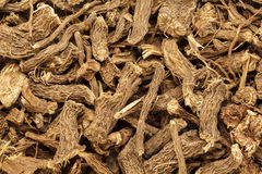 Organic dry Calamus (Acorus calamus) root. Macro close up background texture. Top view Stock Image