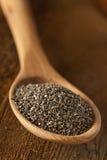 Organic Dry Chia Seeds Stock Image