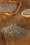 Organic Dry Chia Seeds Royalty Free Stock Photos
