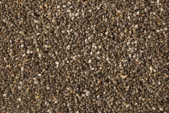 Organic Dry Chia Seeds Stock Images