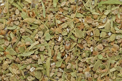Organic dry green cardamom (Elettaria cardamomum) big cut seeds. Stock Images