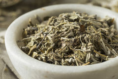 Organic Dry Green Sage royalty free stock images
