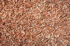 Organic dry lemongrass Cymbopogon flexuosus big cut. Macro close up background texture. Top view Stock Images
