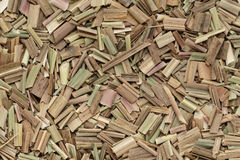 Organic dry lemongrass (Cymbopogon flexuosus) big cut. Macro close up background texture. Top view Stock Images