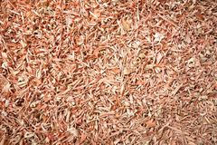 Organic dry lemongrass Cymbopogon flexuosus big cut. Macro close up background texture. Top view Royalty Free Stock Photography