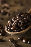 Organic Dry Roasted Coffee Beans Royalty Free Stock Photography