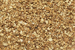 Organic dry sweet orange (Citrus sinensis) tea cut seeds. Stock Image