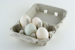Organic Duck Eggs royalty free stock photos