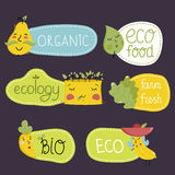 Organic, eco and bio food labels set. Stock Images