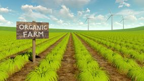 Organic eco farming field and wind turbines 4K stock video footage