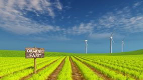 Organic eco farming field and wind turbines Royalty Free Stock Image