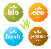 Organic Eco Food Creative Rough Design Concept. Eat Local Fresh Products Illustration On Grunge Background Stock Photos