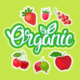 Organic Eco Food Stickers Healthy Lifestyle Stock Image
