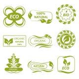 Organic, eco logo, elements flora Royalty Free Stock Photo