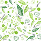 Organic eco seamless background. Seamless background with floral elements . Inspired by eco/organic foods. It will be good to use in project of ecological, safe Royalty Free Stock Photography