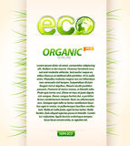 Organic eco template Stock Photo