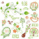 Organic, eco, vegan, nature Royalty Free Stock Photo