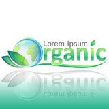 Organic ecology concept with Planet Earth and green leafs Royalty Free Stock Image