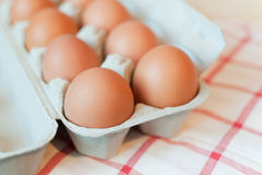 Organic Egg Stock Images