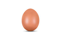 Organic Egg Royalty Free Stock Photo