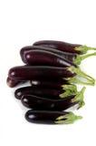 Organic eggplant Stock Photography