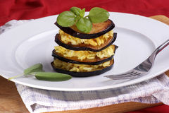 Organic eggplant with some rice on a plate. Grilled organic eggplant with some rice on a plate royalty free stock image
