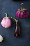 Organic eggplants on stone background Stock Image