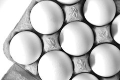 Organic eggs Stock Image